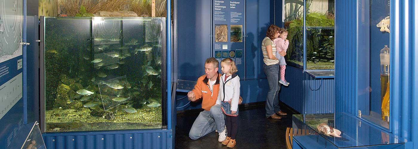 Fischerei im Museum