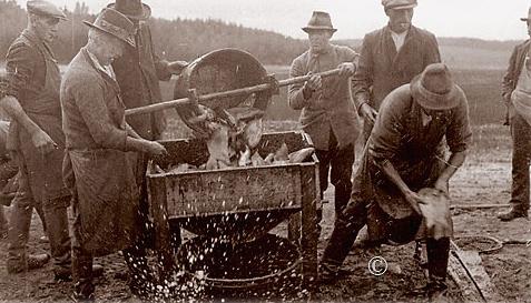 abfischen_1920